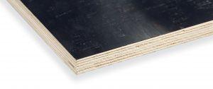 <p>Populieren Betonmultiplex uit China. Een goedkoop alternatief om eenmalig of enkele keren beton te storten.</p>